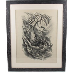 Tales of the Parrot Illustration Charcoal Drawing Lithograph Print Adolf Uzarski