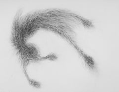 """Biomorphic Spazscattertacular"" drawing, graphite on vellum"