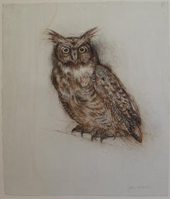 John Alexander, Great Horny Owl, 2008, drawing, charcoal and watercolor on paper