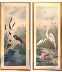Watercolours follower of James Audubon, Birds,  signed Elsie Scott 1905