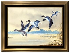 Harry Curieux Adamson Original Gouache Painting On Board Pintail Ducks Signed