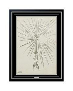 Joseph Stella Original Charcoal Flower Drawing Authentic Rare Still Life Artwork