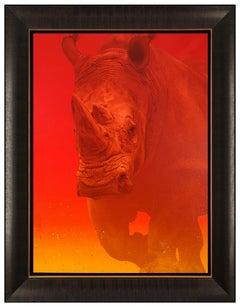 Adam Scott Rote Large Original Acrylic Painting on Canvas Signed Rhino Sunset