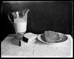 Nature Morte, large framed archival photograph from found glass negatives,
