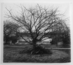 Les Vergers II, black and white photograph on transparent silk, double image