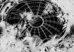 Terminus IV, black and white photo on glass