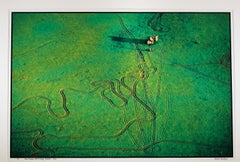 """""""Amor Township, Otter Tail County, MN"""" aerial views of green fields"""