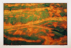 """""""Everts Aerial, Otter Tail CO, MN"""" patterns with green and orange paint fields"""