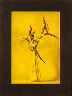 Orlin Mantchev Floral Lilly Still Life