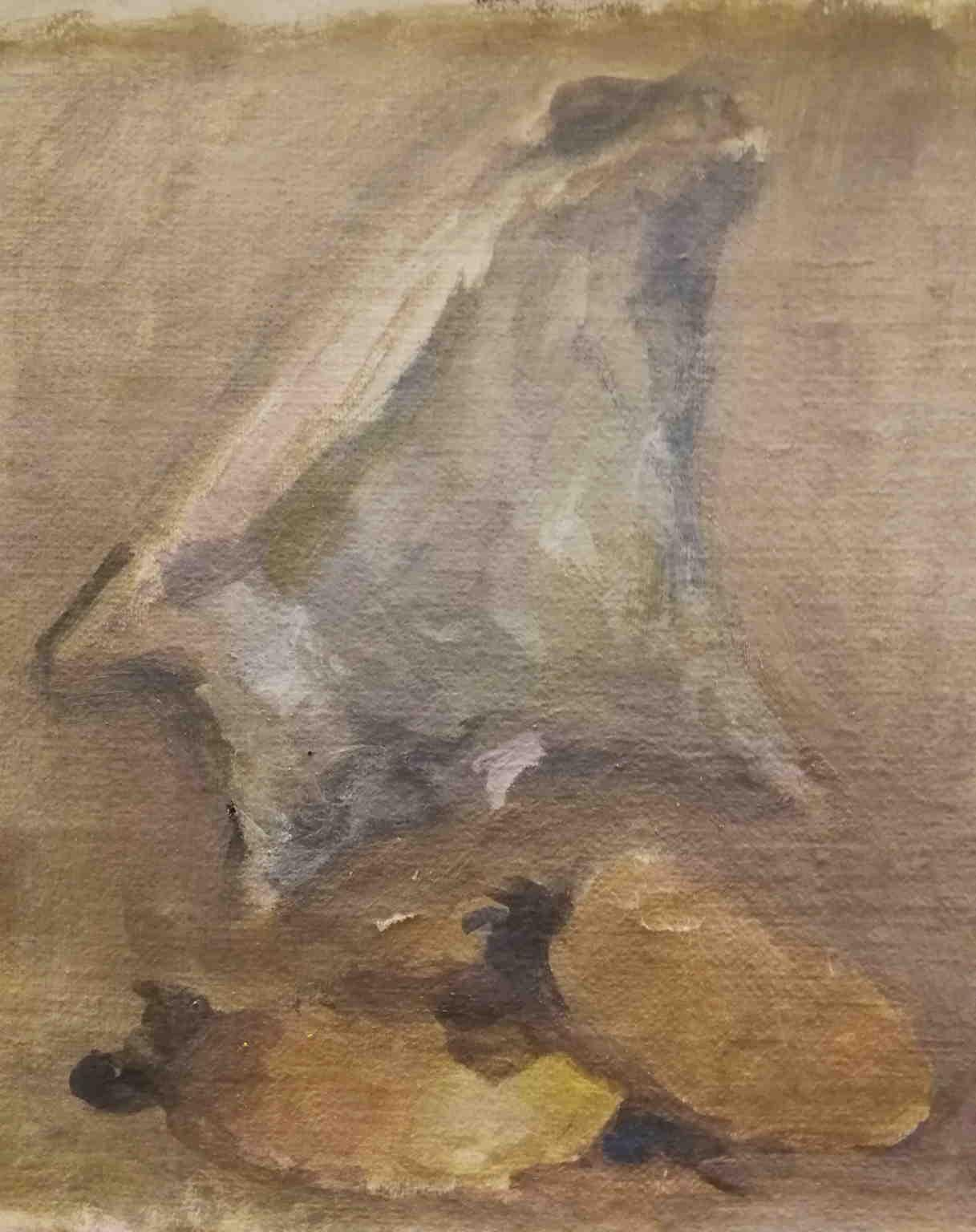 Signed Mario Marcucci Abstract still life Shell Painting 1960s oil canvas