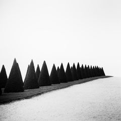 Hedges Study 1, Versailles, Paris, France - Black and White Fine Art Photography