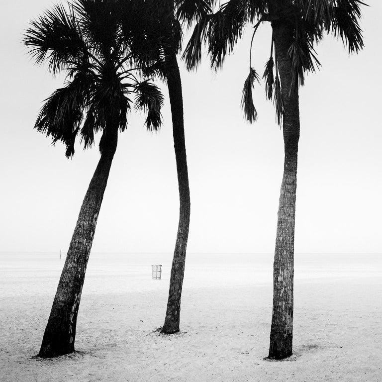 Palm Beach Study #1, Florida, USA - Black and White Fine Art Photography - Gray Black and White Photograph by SILVERFINEART