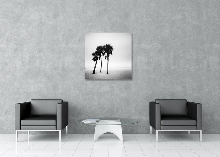 Palm Beach Study #1, Florida, USA - Black and White Fine Art Photography For Sale 1