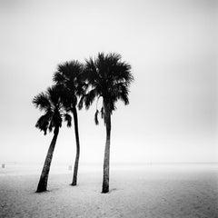 Palm Beach Study 1, Florida, USA - Black and White Fine Art Analogue Photography