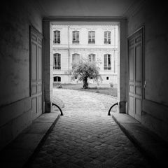 Tree in the Courtyard, Paris, France - Black and White Fine Art Film Photography