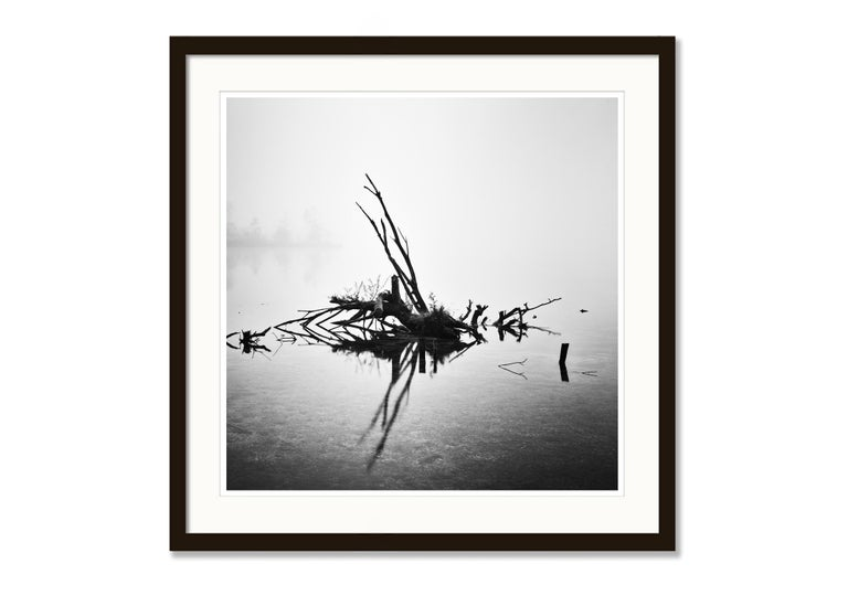 Fallen Tree Study 1, Almsee, Austria - Black and White Fine Art Film Photography For Sale 2