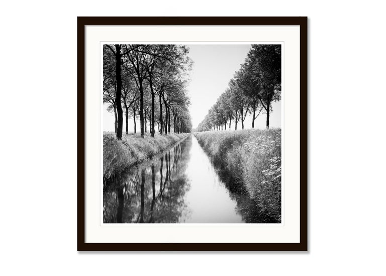 Gracht Study 1, Nehterlands - Black and White Long Exposure Fine Art Photography For Sale 3