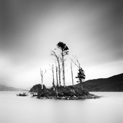 Drowned Island, Trees in moor, Scotland, black and white photography, landscapes