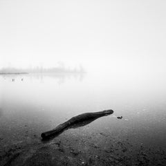Drift Wood, Lake, Austria - Black and White fine art long exposure landscapes