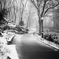 Snow covered Central Park, New York City, black and white photography cityscapes