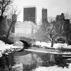 Snow covered Central Park, New York City, black and white photography landscapes