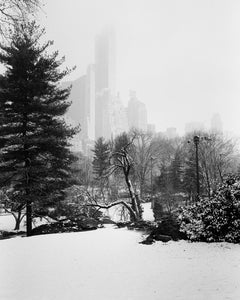 Snow Covered Central Park, New York, USA, black & white photography, landscapes