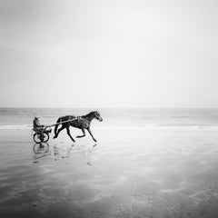 Harness Racing, France, Beach Normandie, France, black and white photography