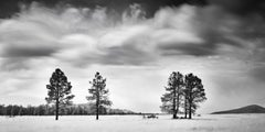 Storm In Golden Field, USA,  contemporary black and white photography landscapes