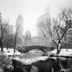 Snow covered Central Park, New York, USA, black and white photography, landscape