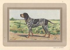 1930s Animal Prints