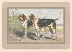 Harrier, French hound, dog chromolithograph, 1930s