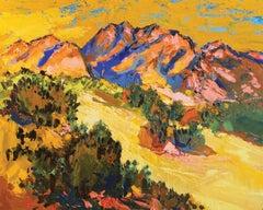 Mustard Mountain at Warpaint