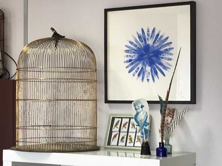 Each feather here is hand-printed using oil-based ink and an etching press. The images are taken from historical illustrations of birds, and some of Jewell's own drawings. The patterned feathers are made by printing the natural patterns from exotic