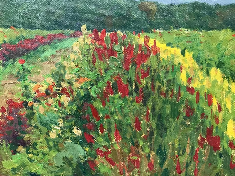 Floral Landscape Impressionistic Oil Painting by Michael Budden Summer Fields For Sale 1