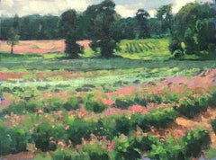 Flower Fields Two, Contemporary Impressionistic Plein Air Floral Oil Painting