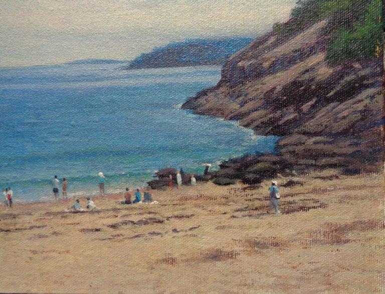 Acadia Sand Beach For Sale 2