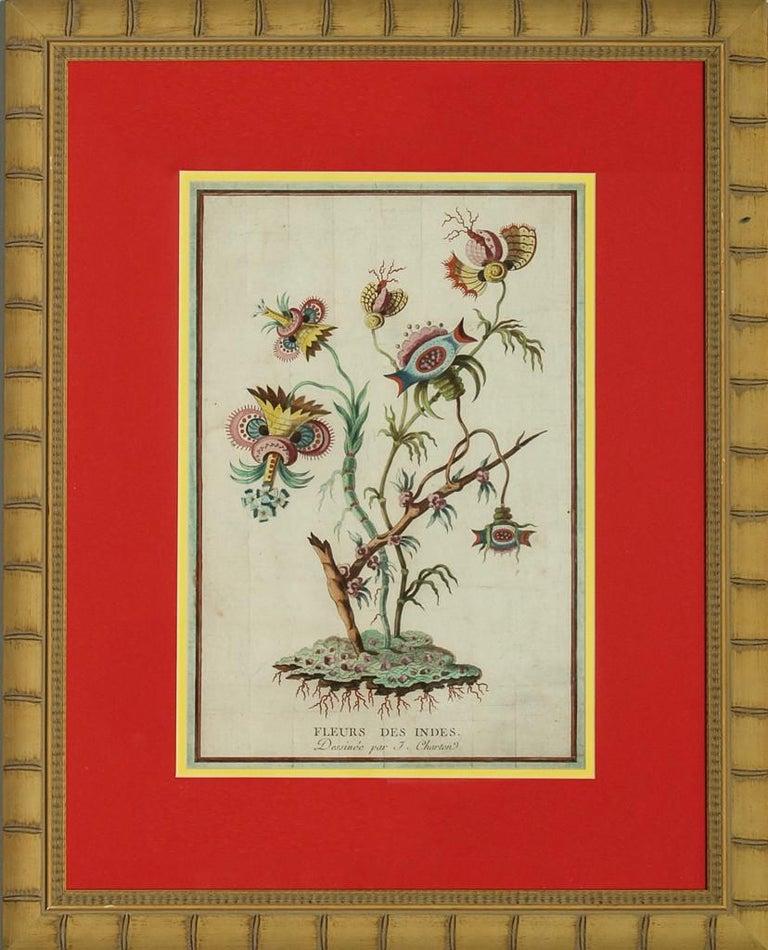 Fleurs des Indes - Painting by Jacques Charton