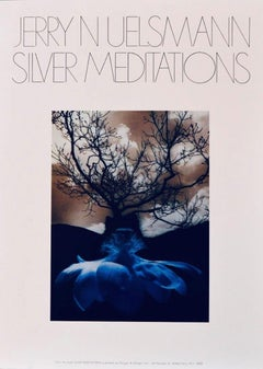 Poster-Silver Meditations, from the book Silver Meditations