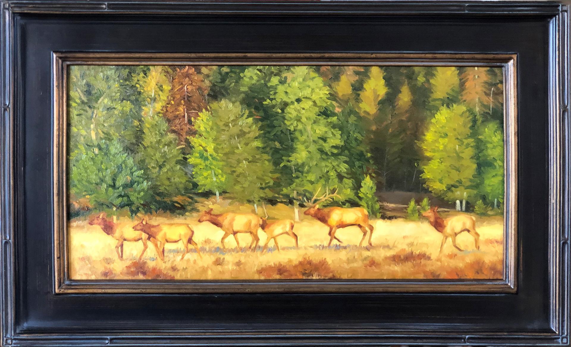 Six Elk