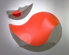 Number 25, Vertebrate Companion Series, 2012, acrylic on canvas, wall sculpture
