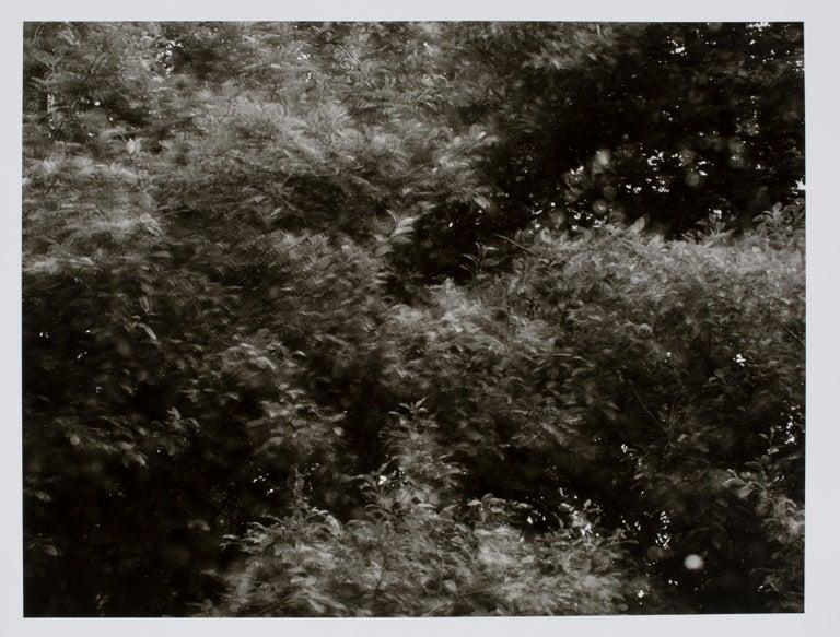 Hideoki Hagiwara Black and White Photograph - Hideoki, Black & White Photography, Blurred, USA, 1970