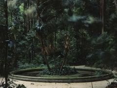 Caio Reisewitz – hausverlassung, Nature, Seasons, Landscape, Forest, Jungle