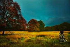 Richmond Park, Old Future – Erik Madigan Heck, Photography, Art, Fashion, Nature