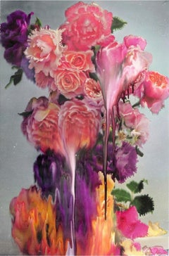Rose 2 – Nick Knight, Photography, Pink, Rose, Flower, Art, Light, Contemporary