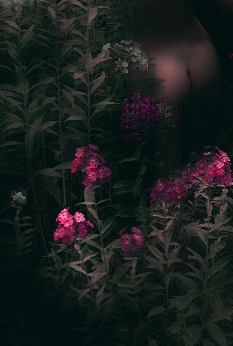 Untitled from the series 'The Garden' – Erik Madigan Heck, Nude, Nature For Sale 2