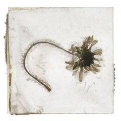 A Tender Grief That Is Not Woe – Brigitte Lustenberger, Flower, Still Life, Art