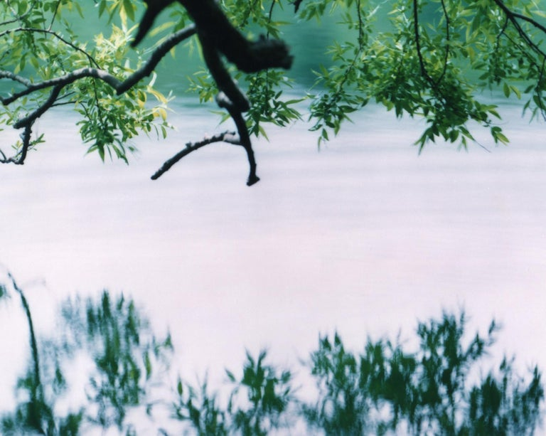 Water Mirror 17, WM-758 – Risaku Suzuki, Nature, Tree, Japanese, Reflection - Contemporary Photograph by Risaku Suzuki