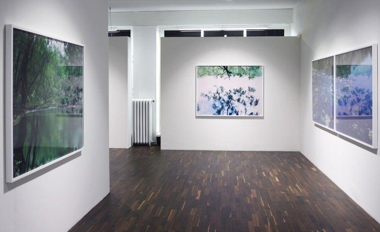 Water Mirror 17, WM-758 – Risaku Suzuki, Nature, Tree, Japanese, Reflection For Sale 1