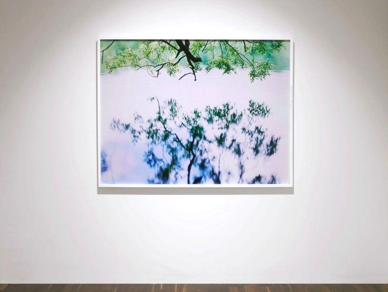 Water Mirror 17, WM-758 – Risaku Suzuki, Nature, Tree, Japanese, Reflection For Sale 2