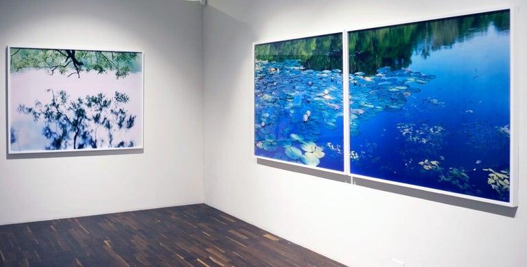 Water Mirror 17, WM-758 – Risaku Suzuki, Nature, Tree, Japanese, Reflection For Sale 3